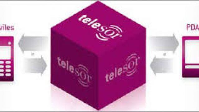 telesor.jpg